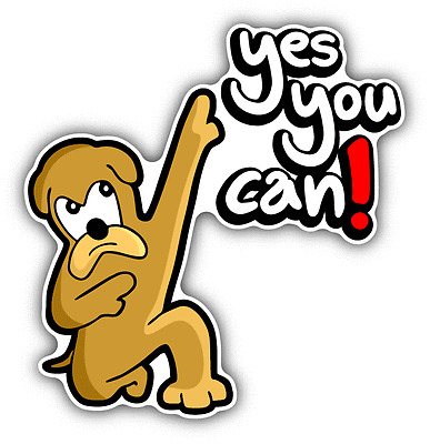 3/'/' Yes You Can Slogan Badge Car Bumper Sticker Decal 5/'/' or 6/'/'