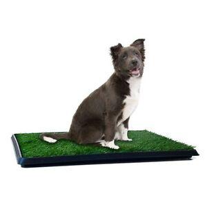 Puppy Potty Grass Indoor Dog Potty Dog Toilet Indoor Grass Potty ...