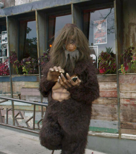 Bigfoot Costume for a tall Adult