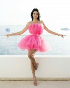 Kendall Jenner Inspired Pink Ruffle