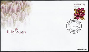 2017-Wildflowers-Golden-Rainbow-Self-Adhesive-S-A-FDC-First-Day-Cover-Stamps