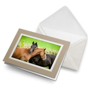 Greetings-Card-Biege-Horse-Couple-Equine-Pony-14622
