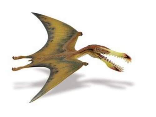 Safari Limited 299729 Pterosaur 7 1//8in Series Dinosaurs