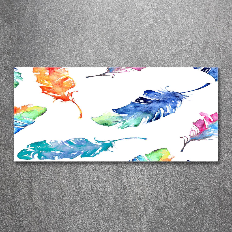Glas-Bild Wandbilder Druck auf Glas 120x60 Deko Kunst Bunte Federn