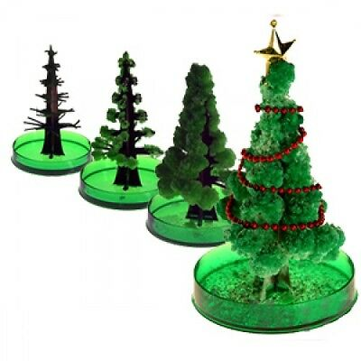 Christmas Tree Fillers.Grow Your Own Christmas Tree Magic Growing Decoration Stocking Filler Toy 07409 5038728034156 Ebay