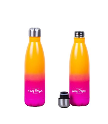 500ml Double Walled Insulated Stainless Steel Water Drink Sport Carry Bottle Gym