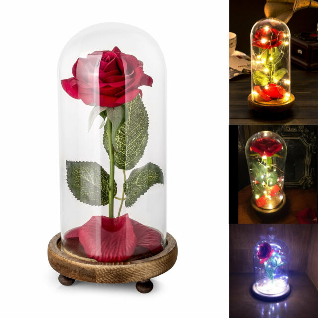 Beauty And The Beast Red Rose In A Glass Dome On A Wooden Base Rose Lamp For Valentines Gifts 2 Rose Selling Well All Over The World Artificial Decorations