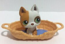 Littlest Pet Shop German Shepherd #127 Dog Orange and White Green Eyes w/ Bed