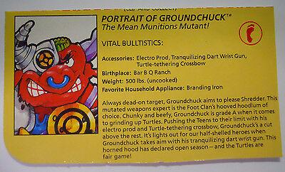 VINTAGE 1991 Playmates Teenage Mutant Ninja Turtles Filecard-Chrome Dome