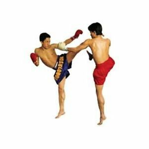 Muay-Thai-Kick-Boxing-Instructional-DVD-039-s-Thai-Boxing