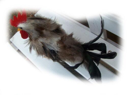 """Landhaus Hahn Federfigur Gockel Ostern /""""Spring Chicken/"""" 23cm"""
