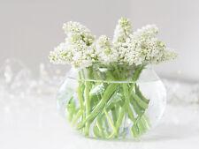 GLASS TEALIGHT VASE SPRING VINTAGE  BULB FRENCH BUD CANDLE HOLDER WEDDING TABLE
