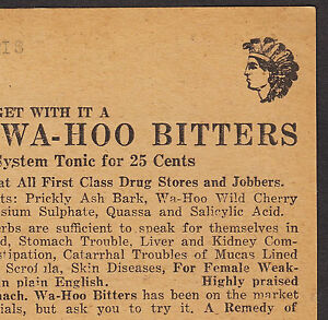 Wa-Hoo-Indian-Bitters-C-K-Wilson-Nerve-Kidney-Blood-Cure-Rheumatism-Trade-Card