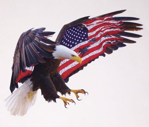 American Flag Attack Eagle 2 STYLE decal Camper motorhome graphic Sticker decals