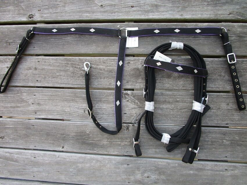 WESTERN HEADSTALL BREASTCOLLAR REINS PURPLE SHOW DOUBLE PLY NYLON HORSE BRIDLE