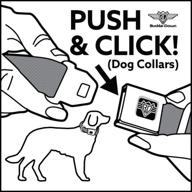 Multicolor Dog Collar