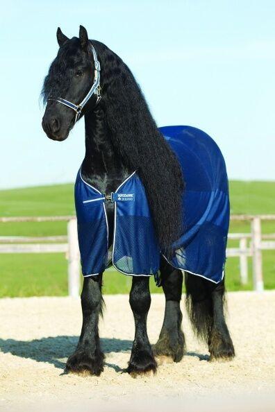Horseware RAMBO Blocco Net traspirazione dell'aria textrosso COOLER tappeto sudore Blu Scuro 5' 0 7' 3