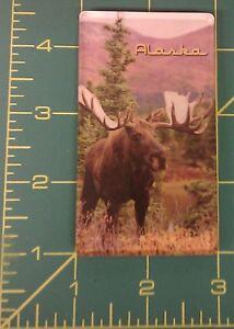 Bull-Moose-Alaska-Acrylic-Magnet-We-combine-items-amp-Ship-worldwide-beautiful