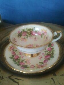 VINTAGE-RARE-UNIQUE-ROSINA-Cream-Floral-Tea-Cup-amp-Saucer-EUC-Gold-Mint