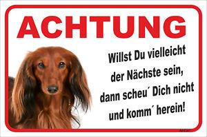 15x20-40x60cm StraßEnpreis Vorsichtig Dackel Langhaar Rot Schild Vorsicht Der Nächste