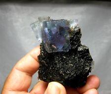 Fluorite on Sphalerite, Denton Mine, Hardin County, Illinois #fl130