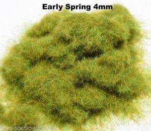 N.Z Wargames TT WWS Frühjahr 4mm Mix Modell Basing Static Grass 10g G O HO OO