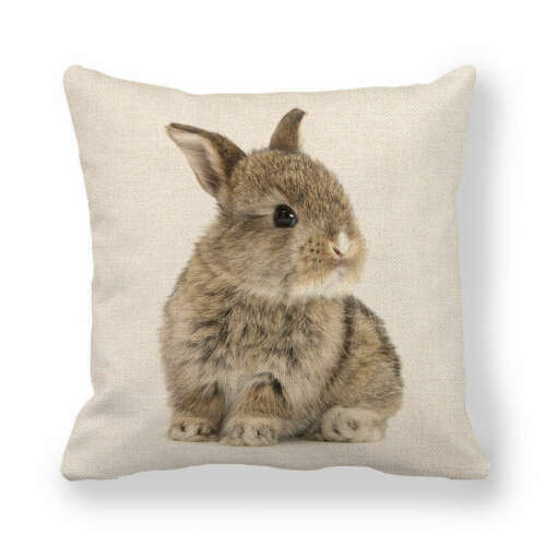 Animals Rabbit Printing Pillow Case Cushion Cover Home Office Couch Decorative