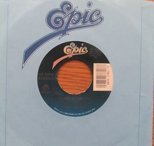 POPA-CHUBBY-Palace-Of-The-King-1995-US-PRESSING-7-034-VINYL-SINGLE-BLUES-GUITAR