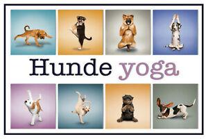 Perros-Dogs-Yoga-Letrero-de-Metal-Arqueado-Tin-Sign-20-X-30cm-CC0367