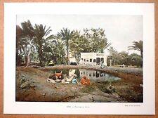 LA FONTAINE DE MOÏSE en Égypte - Photochromie fin 19ème  gravure