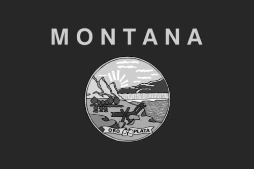 Montana MT State Flag Decal Vinyl Camper Truck Window Sticker Subdued VAR