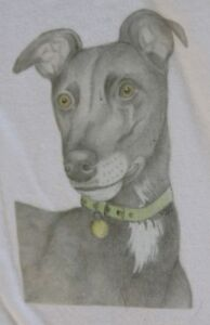 Greyhound-T-Shirts-amp-Sweatshirts-Baby-Child-and-Adult-sizes-From-drawn-designs