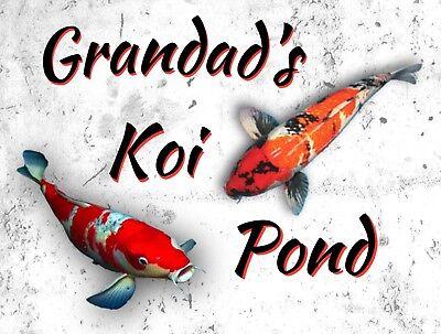 "Japanese Koi Carp Fish Pond Small Photograph 6/"" x 4/"" Art Print Photo Gift #16426"