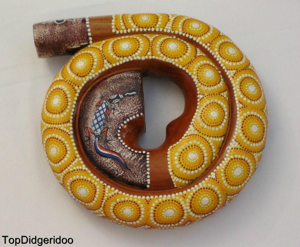 Spirale Lumaca Shell Compatto Didgeridoo+Custodia  Intagliato a Mano & Pallini