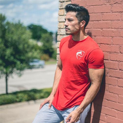 Alphalete Alpha Men/'s Gym T-Shirt Bodybuilding Fitness Training Top Muscle Tee