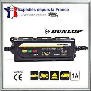 Chargeur Batterie Universel Moto Voiture 6 V 12 V Hiver Recharge Maintien Charge