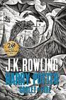 Harry Potter and the Goblet of Fire by J. K. Rowling (Hardback, 2015)