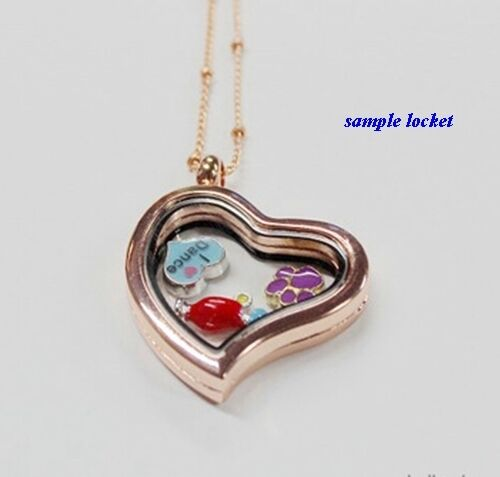 LOVE MY YORKIE with Heart Enamel Silver Dog Floating Charm for Memory Lockets