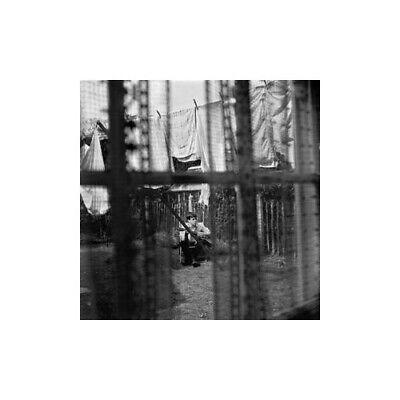 Paul Mccartney - Chaos And Creation In The Backyard - Paul ...