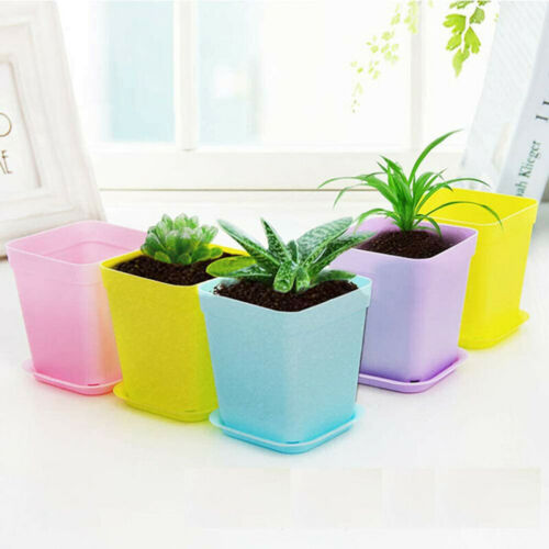 10pcs Mini Basin Square Flower Pot Succulent Plant Trays Home Office Decor DIY