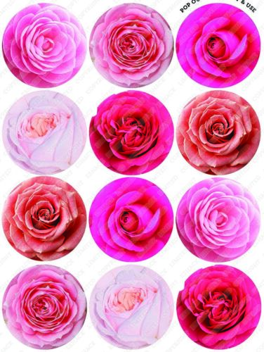 Cakeshop 12 x PRE-CUT Pink Roses Edible Cake Toppers