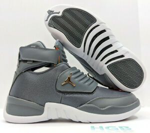 new arrivals 1312c c7a46 Image is loading Jordan-Generation-23-Mens-Cool-Grey-White-Gold-