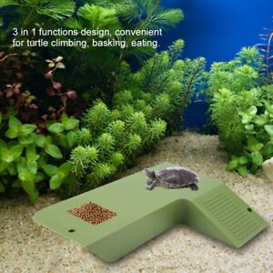 Aquatic Reptile Habitat Kit Aquarium Tank Terrarium Pet Frog Turtle