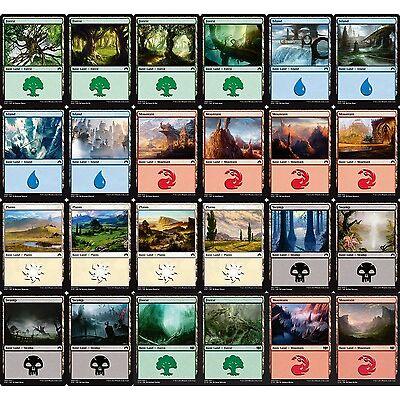MTG Magic - 250 x Basic Land