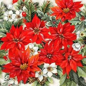 20-X-Ambiente-Noel-Festif-Rouge-Poinsettia-Floral-Serviette-Serviettes-33cm