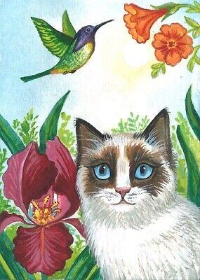 ACEO PRINT OF PAINTING RYTA CAT BIRD SPRING HUMMINGBIRD BOTANICAL GARDEN IRIS