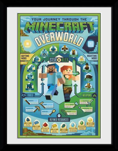 Minecraft Overworld Biome Collector Print 30x40cm12x16