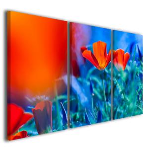 Quadri moderni Poppis fiori colorati papaveri stampa su tela canvas ...
