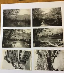 6-Japan-Cherry-Blossom-Architecture-C-1910-postcard-RPPC-BW-Photos
