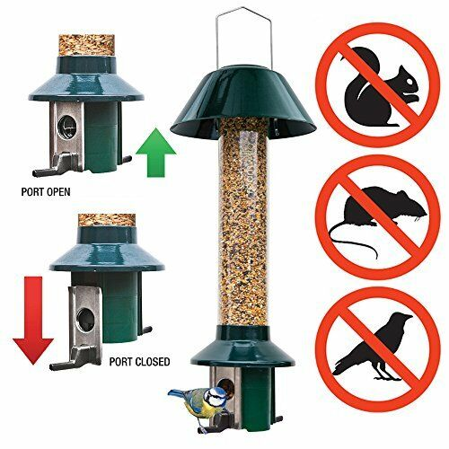 Squirrel Proof Bird Feeder - PestOff Mixed Seed feeder - NEW PRODUCT - Roamwild